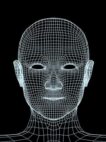 head-person-3d-grid-4346341